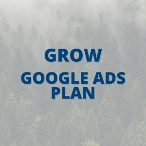 Grow Google Ads Plan