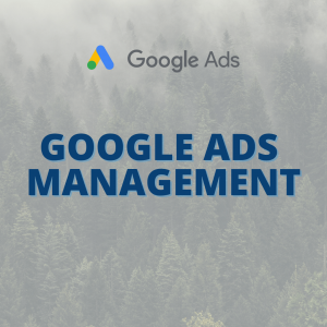 Product Picture For Google Ads Management